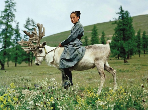 vogue reindeer